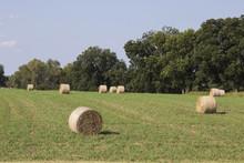 Round Bales Of Hay Landscape