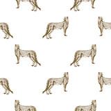 Bezszwowe wektor wzór geparda ręcznie rysowane szkic - 173322470
