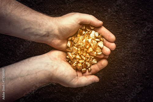 Valokuva  Gold nuggets the hands of the miner