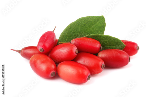 fresh barberry with leaves isolated on a white background Wallpaper Mural