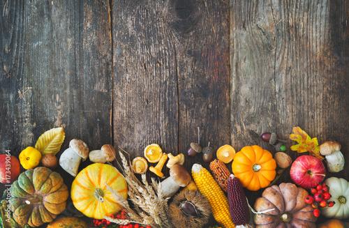Fototapeta Harvest or Thanksgiving background obraz na płótnie