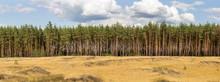 Extra Large Wide Panoramic Vie...