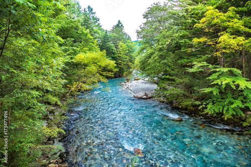 Canvastavla 山奥の木々と川の流れ