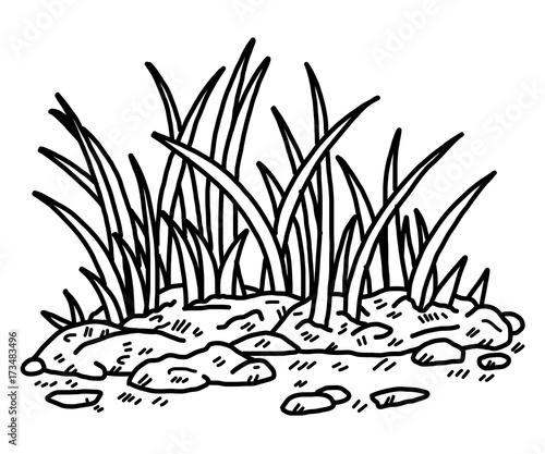 grass / cartoon vector and illustration, black and white ...
