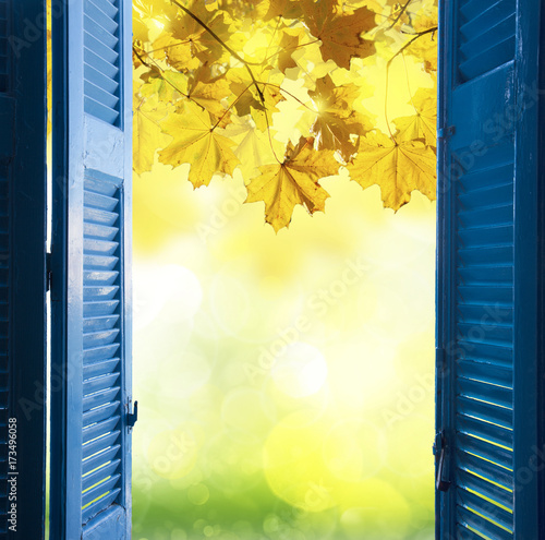 Staande foto Meloen room with open blue window shutters to - fall garden with yellow leaves and green grass