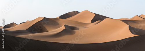 Canvas Print Golden dunes