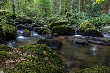 Small rocky river in the forest