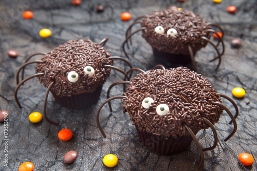 Chocolate spider cupcakes for Halloween party Wallpaper Mural