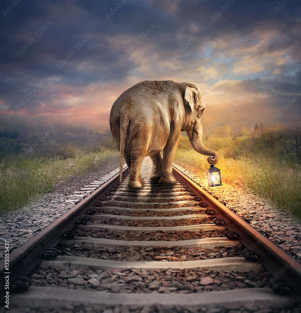 Elephant with glowing lantern. Surreal digital illustration.