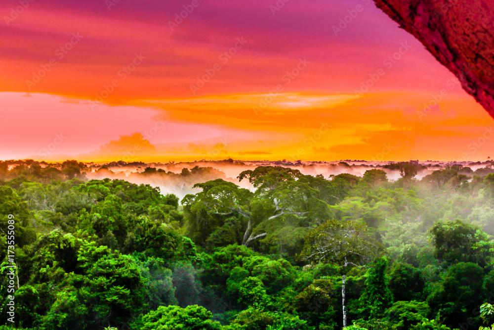 View on purple sunset over the brazilian rainforest in the Amazon region