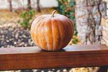 Large Orange Pumpkin Lies On W...