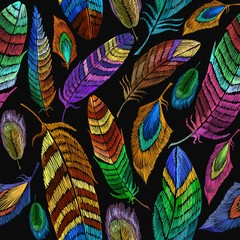 Fototapeta Ptaki Color feathers embroidery seamless pattern. Fashionable template for design of clothes, t-shirt design. Beautiful feathers of tropical birds fashion embroidery seamless background