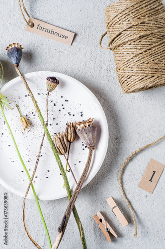 Plakat Pączki i makowi ziarna w białym talerzu nad szarość betonują tło