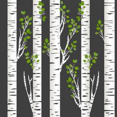 Panel Szklany Botaniczne Birch trunks in night