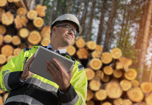 Photo  Forestry worker with digital tablet checking trees
