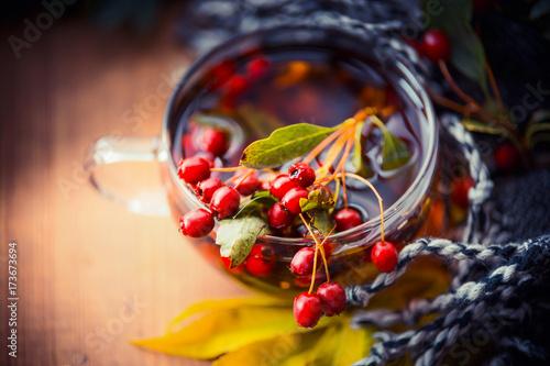 filizanka-jesiennej-herbaty-z-czerwonymi-jagodami-w-tle-bialo-niebieska-linka
