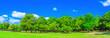 canvas print picture - 森林と広場 奈良公園