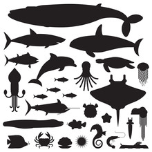 Underwater Animals And Sea Cre...