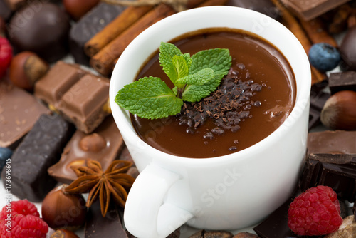 Spoed Foto op Canvas Chocolade hot chocolate with mint and ingredients, top view