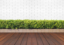 Wood Floor With Plant And Whit...