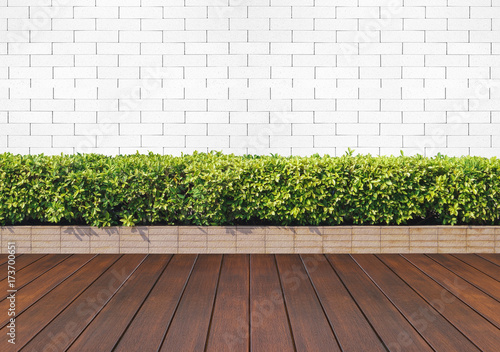 wood floor with plant and white brick wall Fototapete