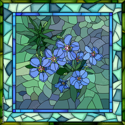 wektorowa-ilustracja-kwiatu-blekita-anagallis