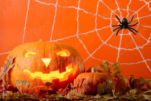 Zdjęcie XXL Rozjarzona Halloweenowa bania i czarny pająk wśród żółtych liści na tle sieć w pomarańczowej ścianie