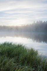 Fototapeta Foggy morning at forest pond landscape Finland