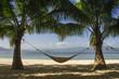 Hamac sur une plage de rêve