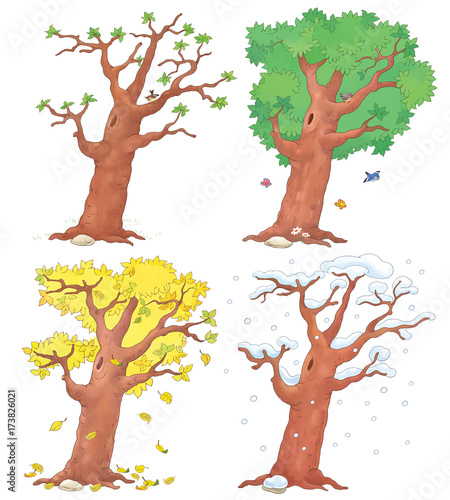 Four Seasons Spring Summer Autumn And Winter Coloring Page Illustration For Children Buy This Stock Illustration And Explore Similar Illustrations At Adobe Stock Adobe Stock