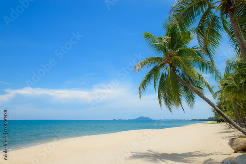Wall Murals Blue Beautiful view of coconut palm trees on tropical beach and blue sky background