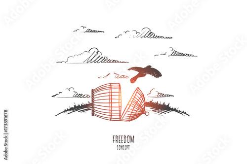 Fotografie, Obraz  Freedom concept