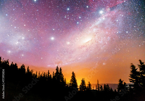 Fantastic starry sky and the milky way above the pinnacles of the pines Canvas Print