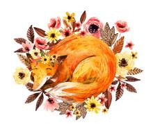 Watercolor Sleeping Fox Among ...