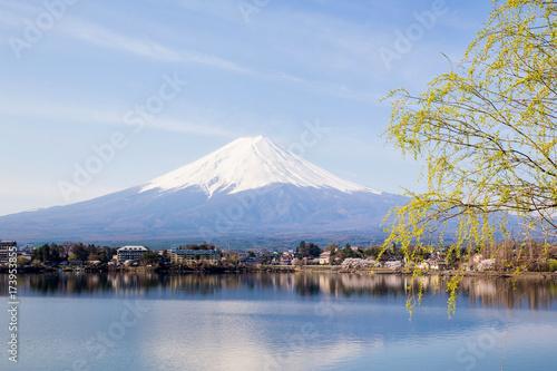 Wall Murals Kyoto Mt Fuji at lake Kawaguchiko