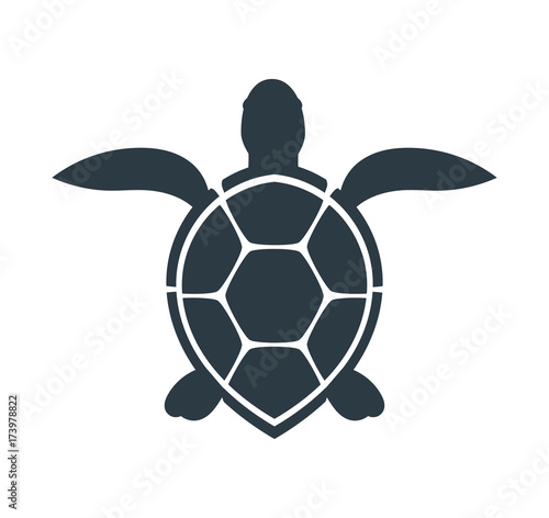Fotografie, Obraz Sea turtle icon.