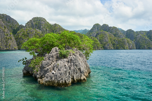 Spoed Foto op Canvas Eiland A Small Islet Near Coron Island, Philippines