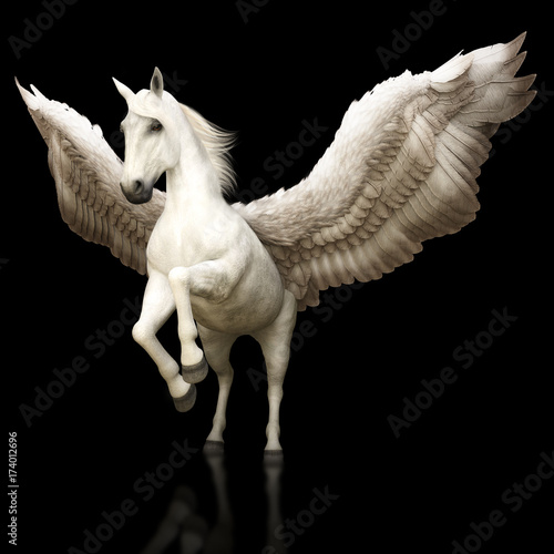 Fototapeta Pegasus majestic mythical Greek winged horse on a black background. 3d rendering obraz