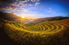Rice Fields On Terraced With Wooden Pavilion At Sunset In Mu Cang Chai, YenBai, Vietnam.