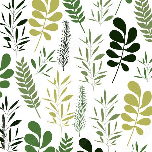 Wzór liści na białym tle