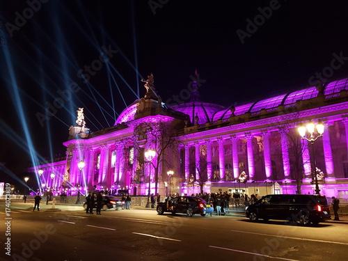 Grand Palais in Paris Canvas Print