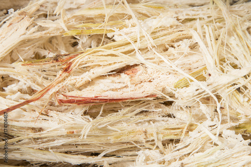 Photo Waste of sugarcane - Saccharum officinarum
