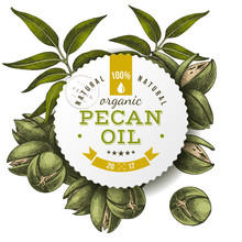 Pecan Oil Label Over Hand Draw...