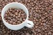 Coffee.Coffee beans. Coffee beans