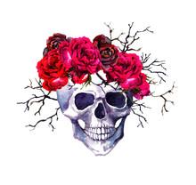 Human Skull, Red Roses, Branch...