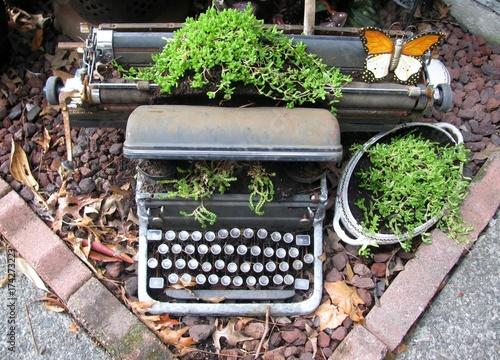 Montage in der Fensternische Schmetterlinge im Grunge Upcycled typewriter planter
