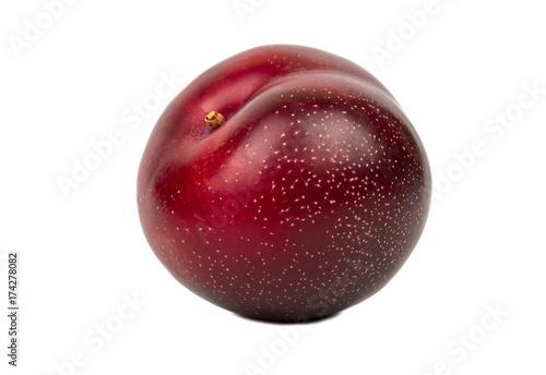 Big red plum