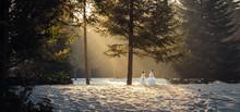 Schneemänner Im Wald Mit Schnee Im Winter