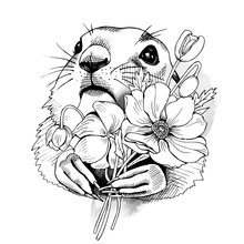 Prairie Dog Portrait With Flowers Narcissus. Vector Black And White Illustration.