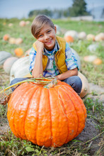 Boy Having Fun With Pumpkins O...